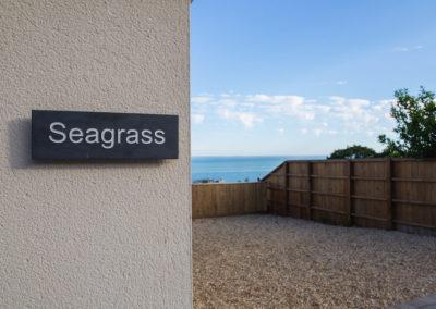seagrass36